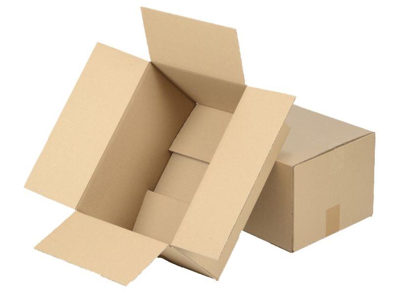 250x200x100 Karton Pudełko XS  20szt