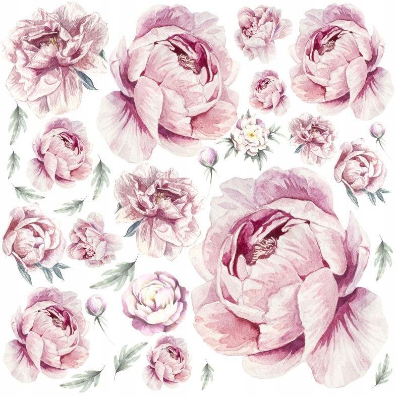 PIWONIE kwiaty PEONIE Naklejki na ścianę 50x50 WOW