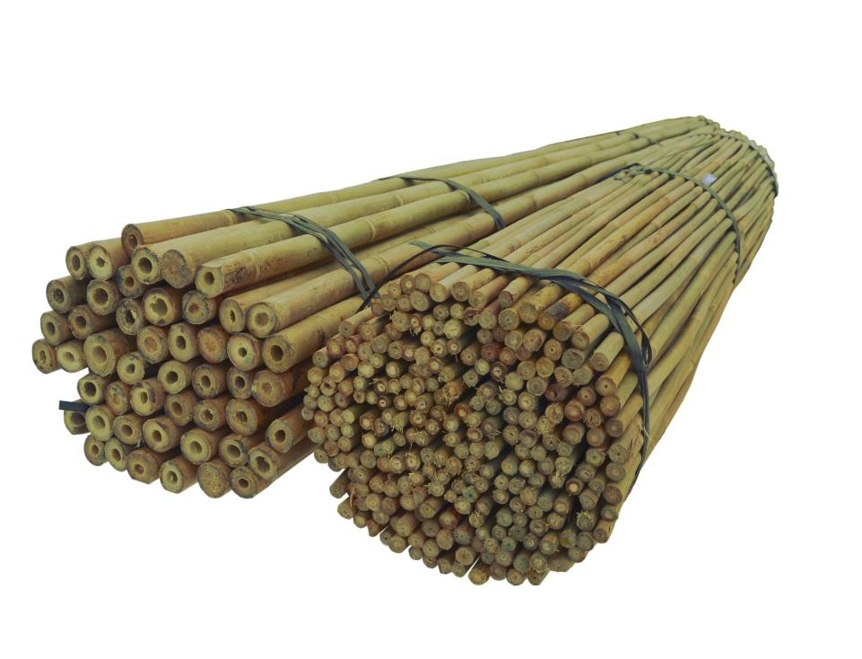 BAMBUSOVÉ TYČE 150 cm 14/16 mm /200 Ks, bambus