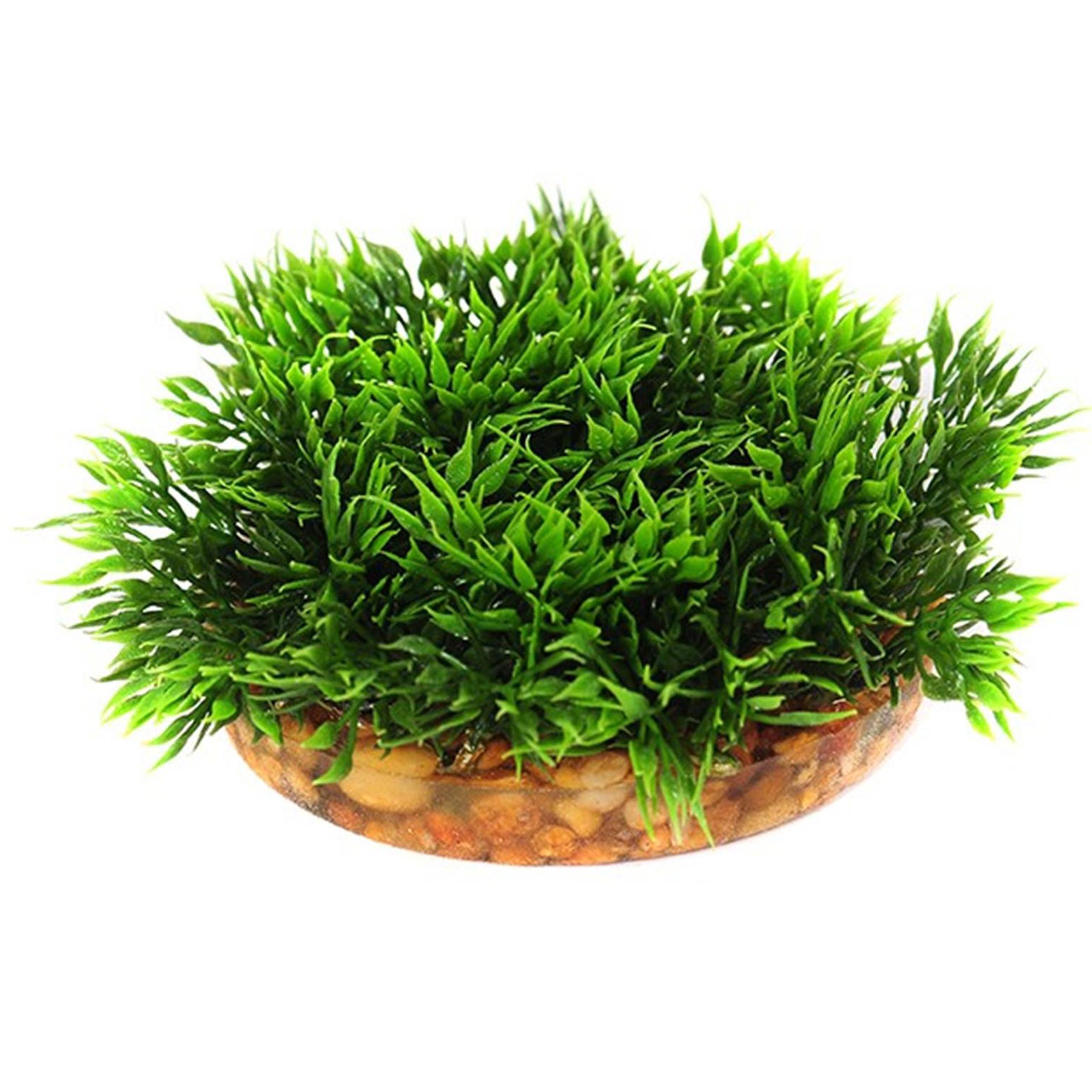 Umelé rastliny v Aqua rime AKVÁRIU dekorácie KOBR