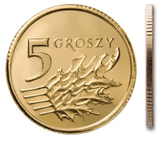 Монета MW 5 грошей 2013 монетного двора из мешочка