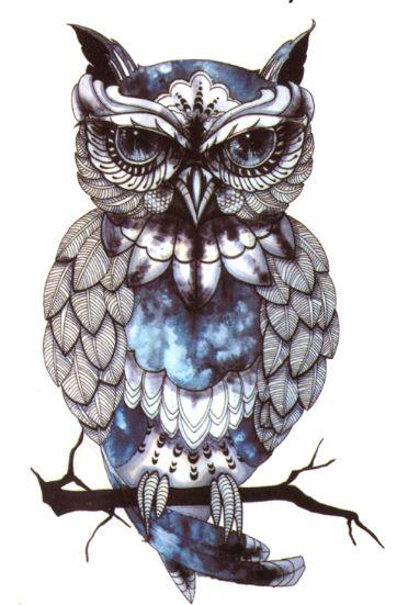 Kolorowa Sówka Tattoo Tatuaż Z Sową Naklejka M14
