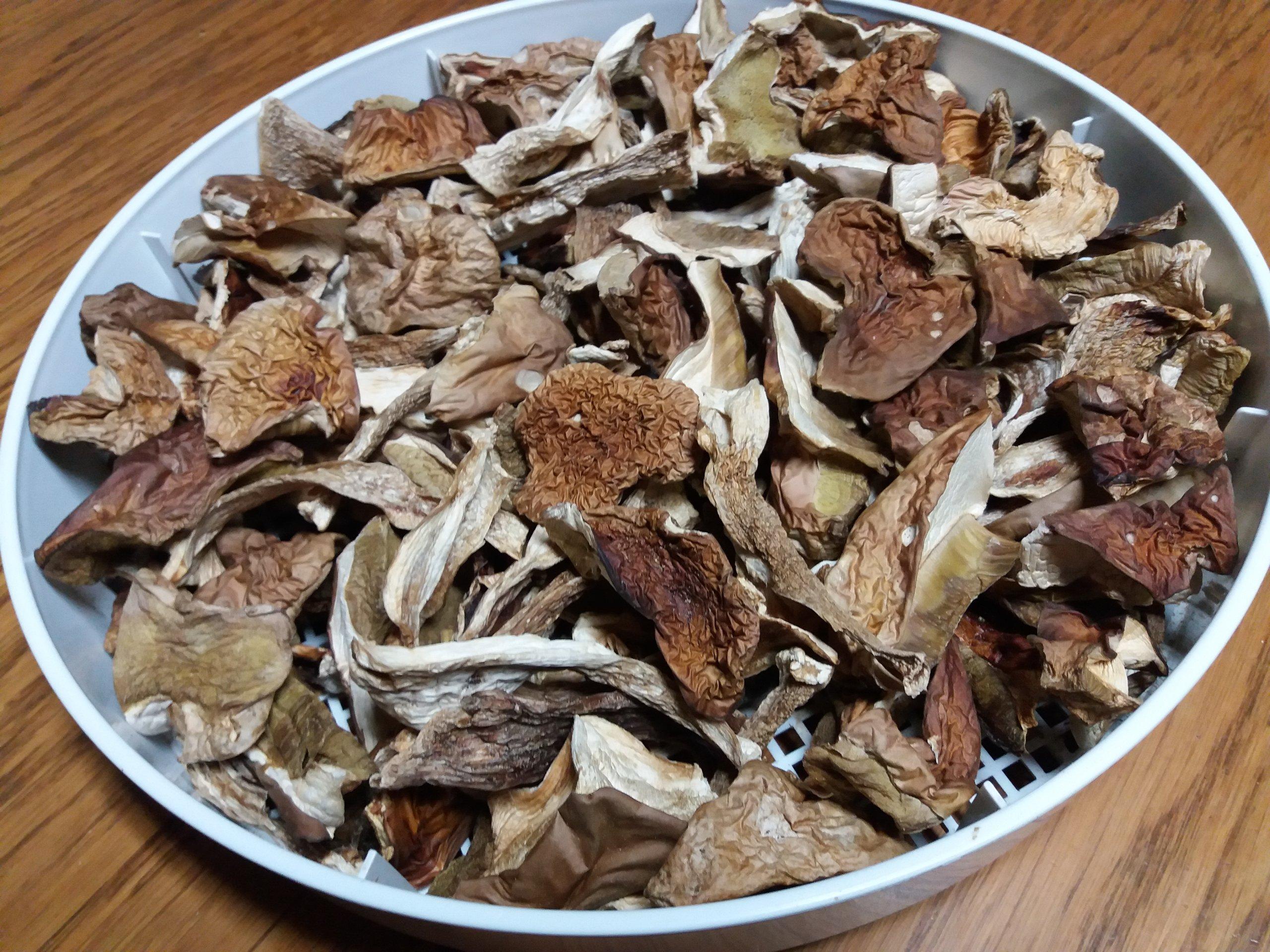 Как готовить китайские грибы белые сушеные