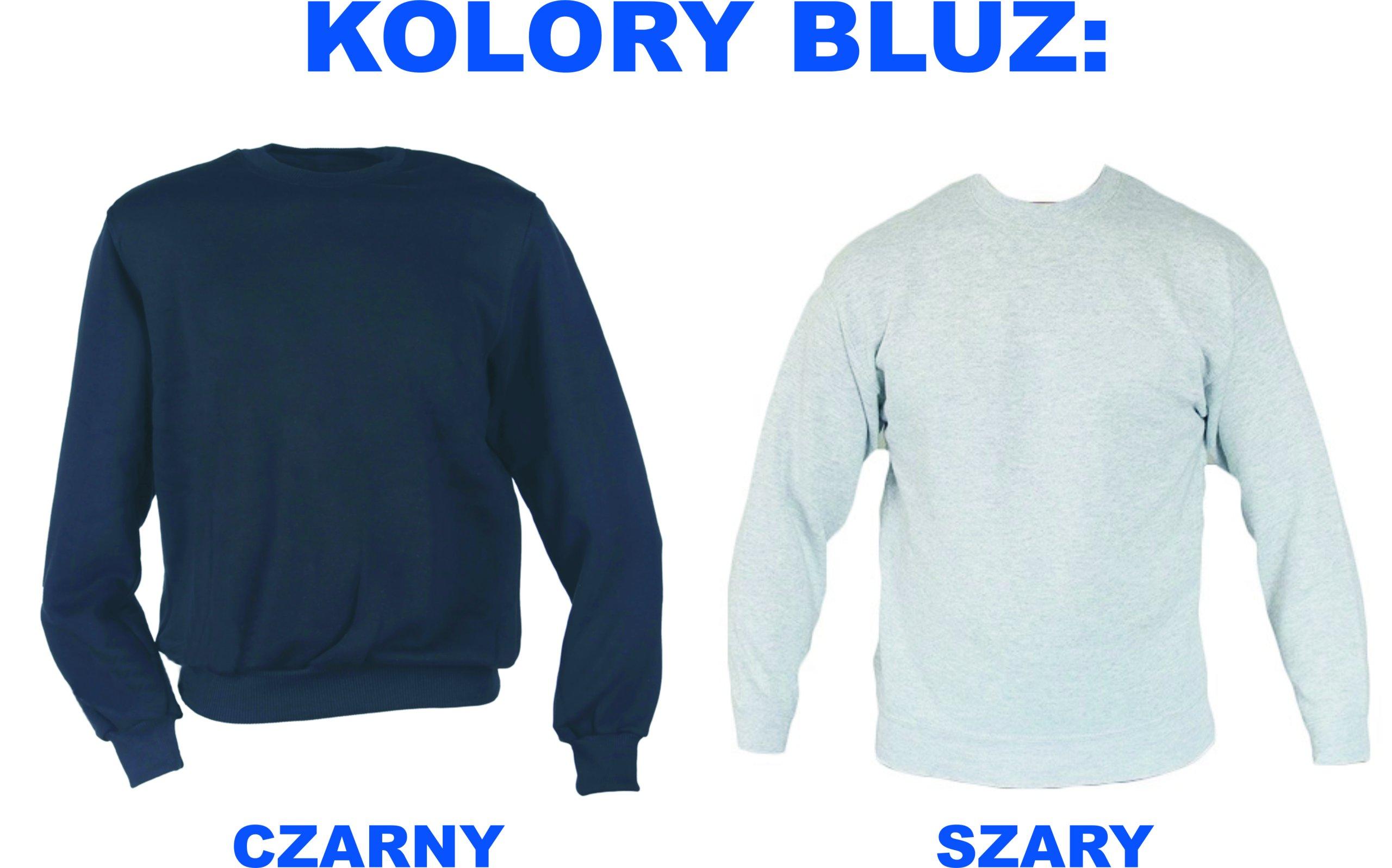 Bluza Bluzy Volkswagen Seat Honda Alfa Romeo 7233084713 Sweater