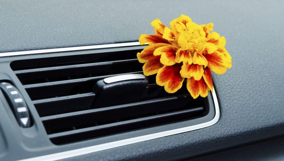 Samochodowy zapach – jaki wybrać?