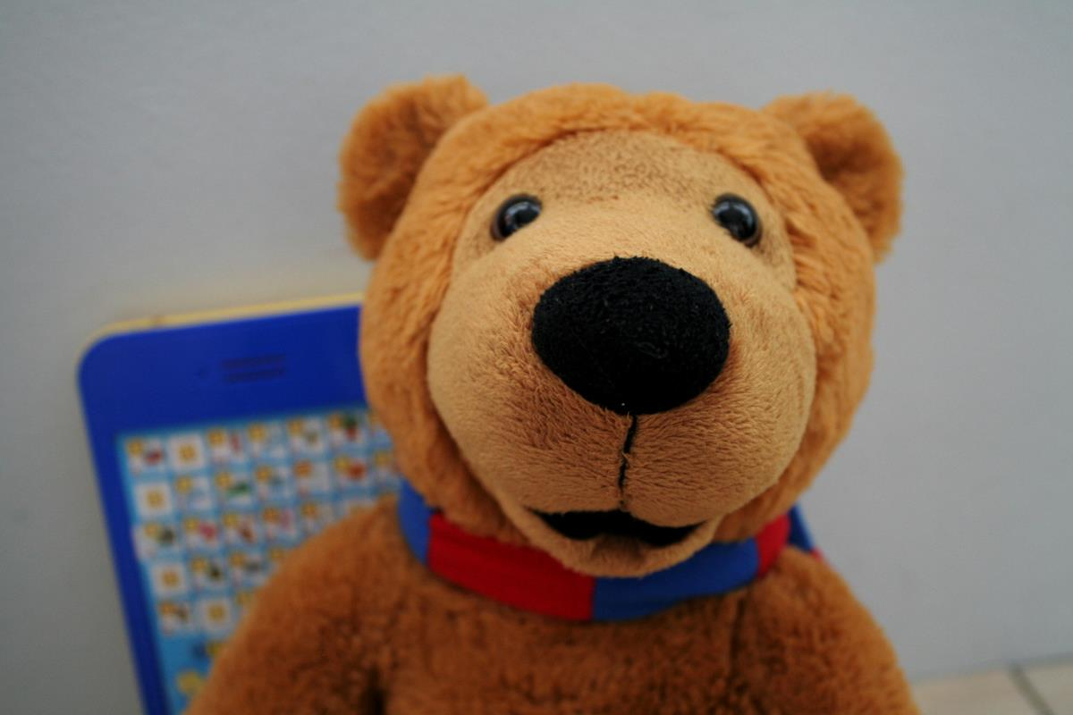 photo 1 Bear