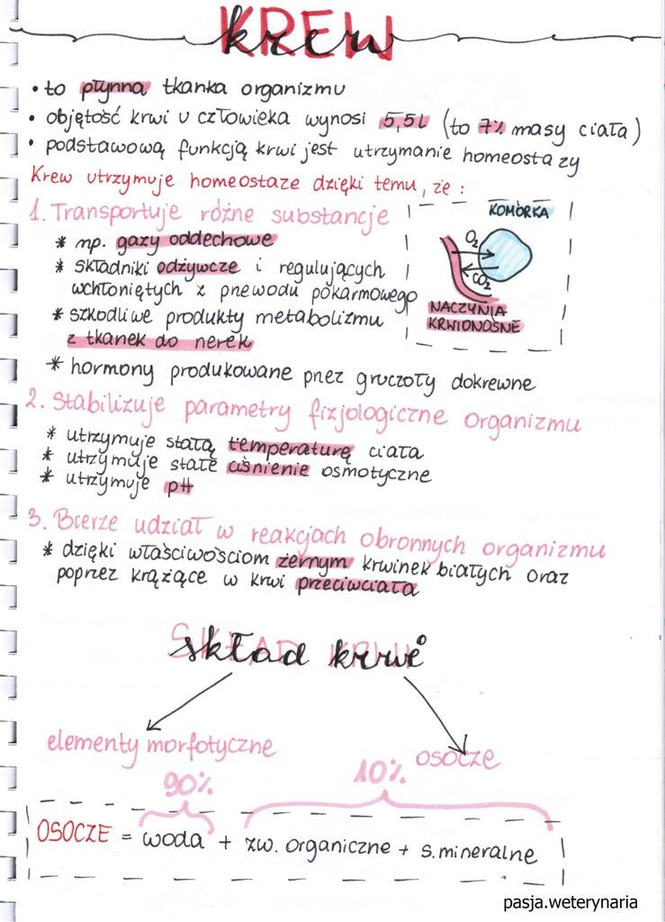 chemia powtórzenie do egzaminu gimnazjalnego pdf