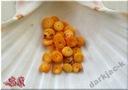 koral pomarańczowy - talerzyki 9/3mm