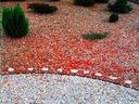 Plôtik, palisáda, obrubník - Okrajové záhradné trávnikové palisády 30 m + ANCHORY