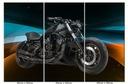 Obraz Motor Motocykl Harley Davidson Night V-Rod