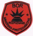 Biuro Ochrony Rządu