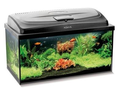 аквариум 60 LED черные 54L + FULL Оборудование