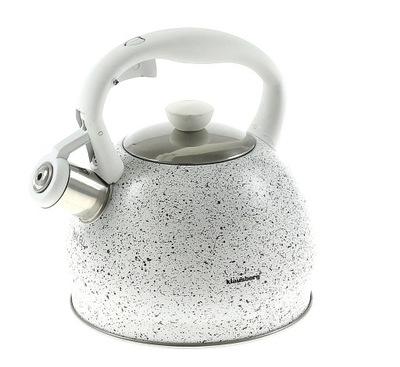 Чайник Стальной со свистком 2Л Индукция газ цвета