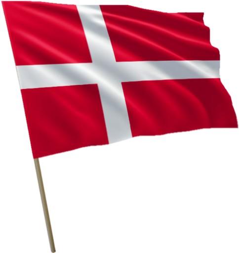 Flaga Dani Dania 100x60cm 7118046727 - Allegro.pl